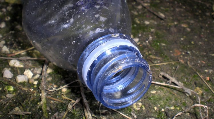 A plastic bottle that could be recycled.