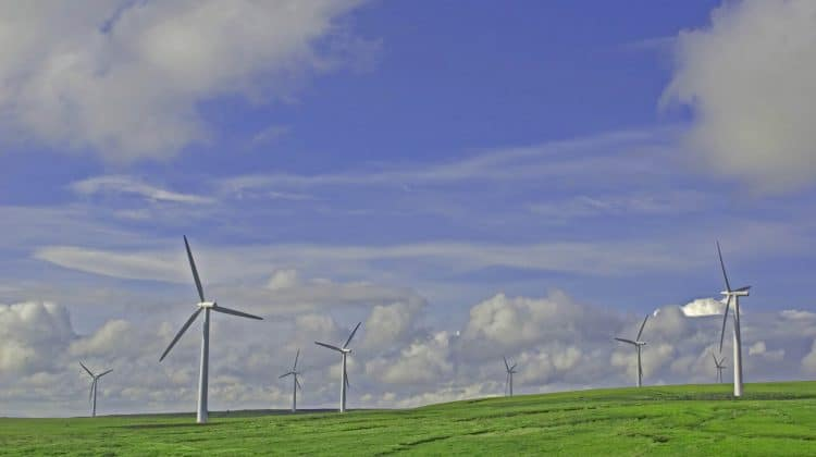 Wind turbines harnessing wind energy which is a natural energy source.