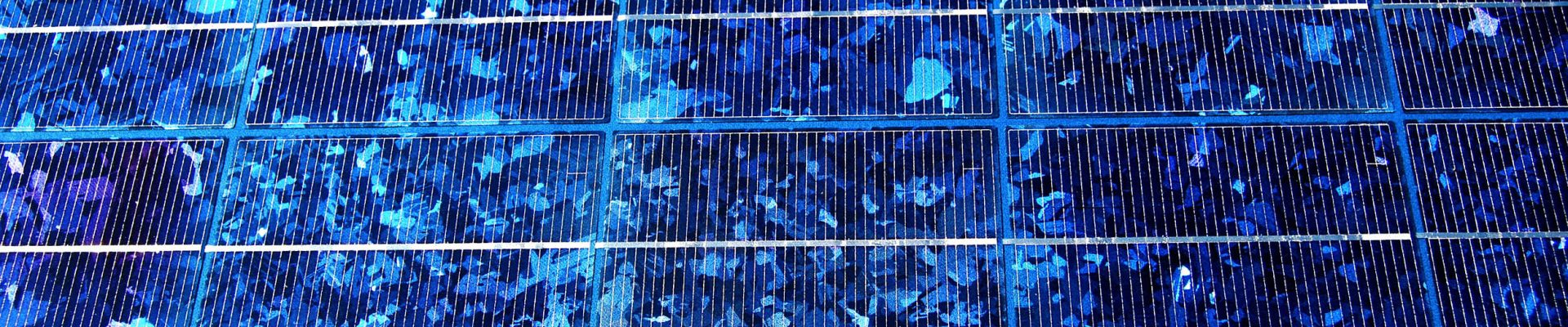 An array of solar panels collecting solar energy.