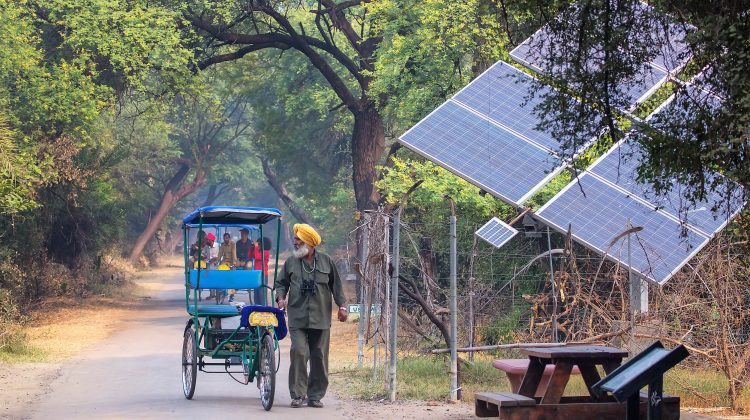 A photo showing a solar panel in India's Keoladeo Ghana National Park in Bharatpur, Rajasthan.