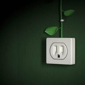 A picture showing a power outlet with leaves representing energy conservation.