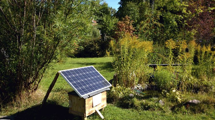 A solar panel being used to provide power in a garden.