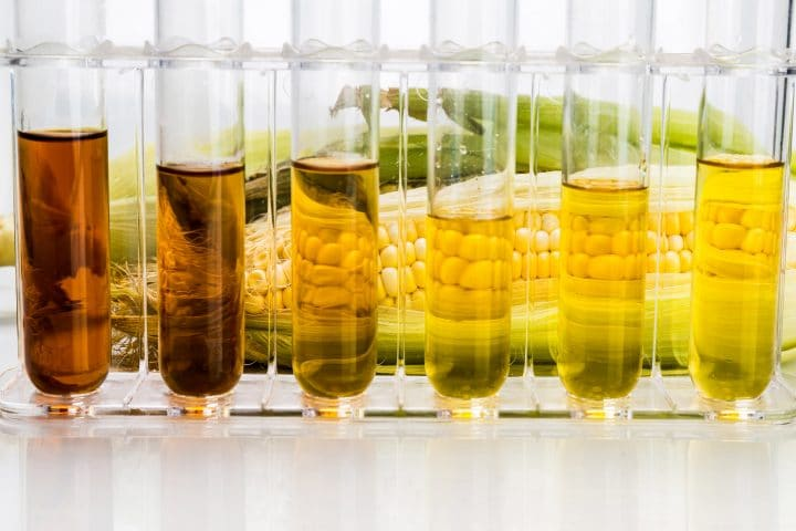 Test tubes containing different biofuels.