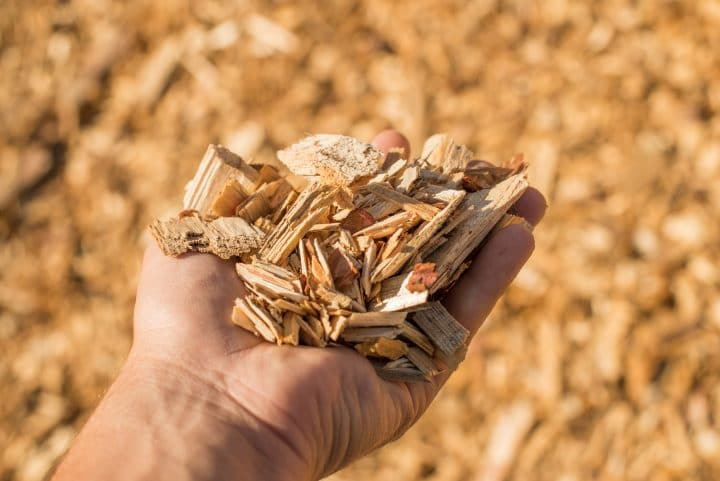 Wood chips used in biomass power plants.