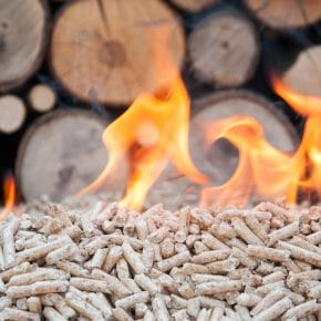 Logs and wood chips are a renewable form of biomass.